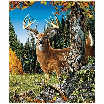 Royal Plush Extra Heavy Queen Size Deer in the Meadow Blanket