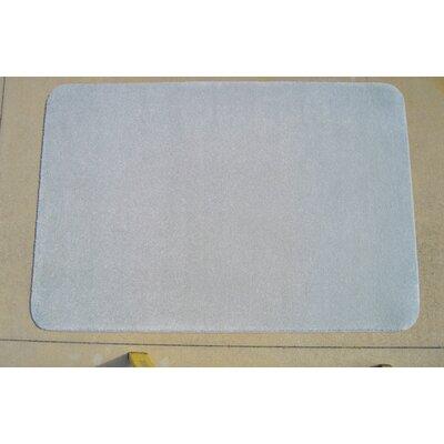 Luxury Plush Fog Area Rug Rug Size: 4' x 6'