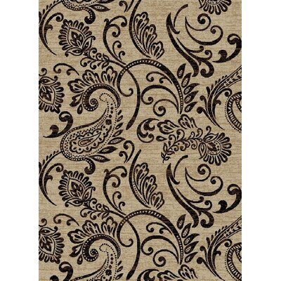 Calliope Ivory/Black Area Rug Rug Size: Rectangle 5'3