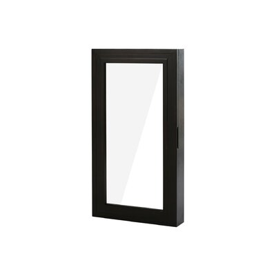 Garwood Over The Door Jewelry Armoire with Mirror Color: Expresso