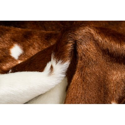 Chocolate/White Cowhide Area Rug