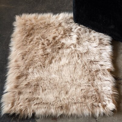 Shawnta Tan Area Rug Rug Size: 3 x 5