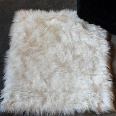 Shawnta Off-White Area Rug Rug Size: 2 x 3