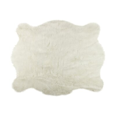 Off White Area Rug Rug Size: 5 4 x 7 6