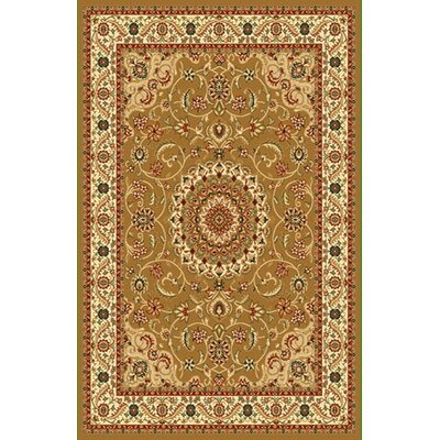 Brown Area Rug Rug Size: 66x99