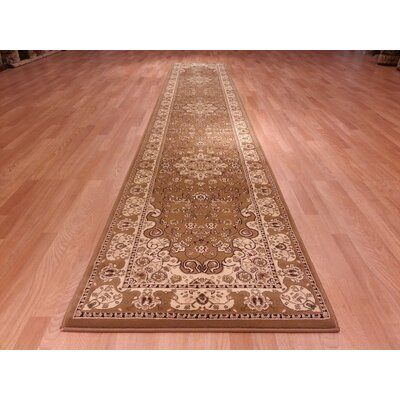 Brown/Biege Area Rug Rug Size: Runner 27 x 72