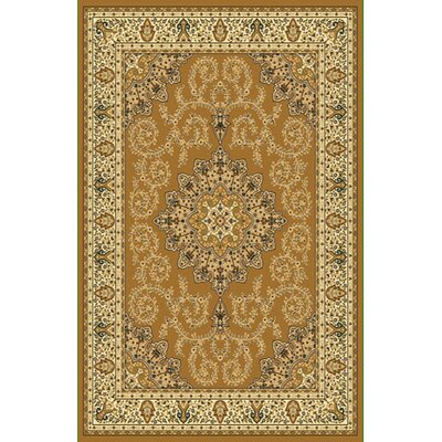 Brown Area Rug Rug Size: 10 x 13