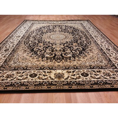 Black Area Rug Rug Size: Runner 27 x 60
