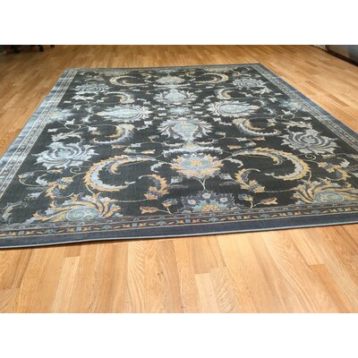 Gray Area Rug Rug Size: Rectangle 53 x 72