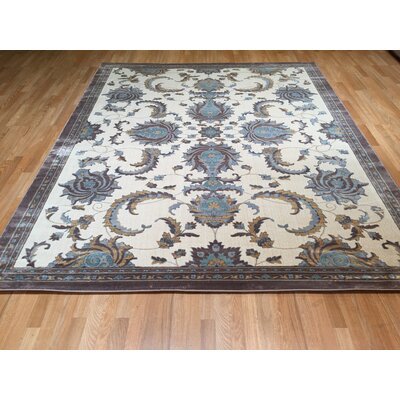 Brown/Blue Area Rug Rug Size: Round 8