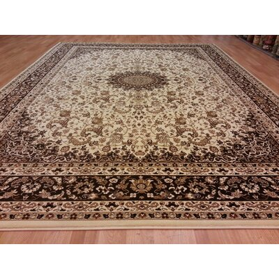 Brown Area Rug Rug Size: Rectangle 10 x 13