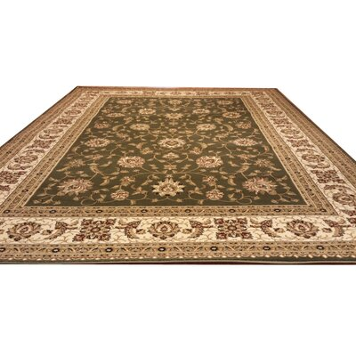 Green Area Rug Rug Size: Rectangle 53 x 72