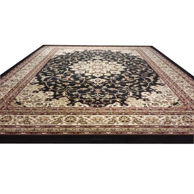 Black/Beige Area Rug Rug Size: Rectangle 2 x 3
