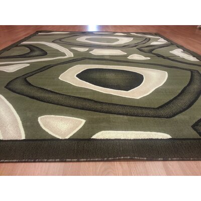Hand-Carved Green Area Rug Rug Size: Round 8