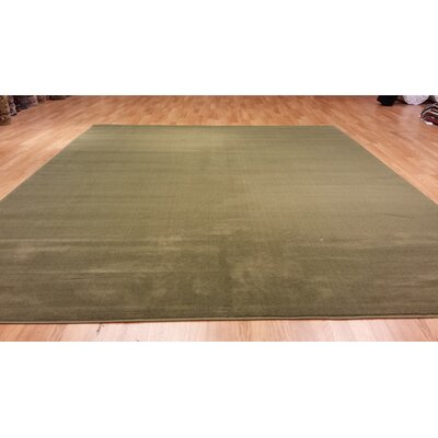 Hand-Carved Green Area Rug Rug Size: 5'3