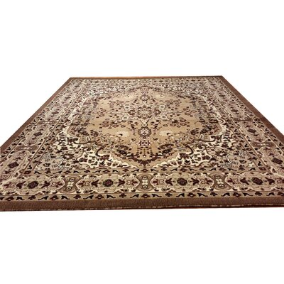 Hand-Carved Brown Area Rug Rug Size: Rectangle 53 x 72