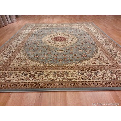 Silver Area Rug Rug Size: Rectangle 711 x 910