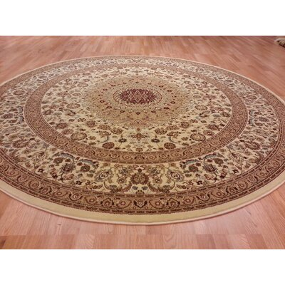 Brrown/Beige Area Rug Rug Size: Rectangle 53 x 72