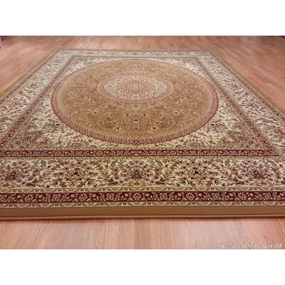 Gold Area Rug Rug Size: 10 x 13