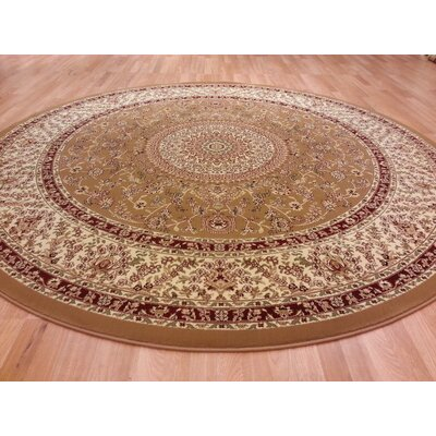 Gold Area Rug Rug Size: Round 8