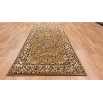 Gold Area Rug Rug Size: Runner 27 x 910