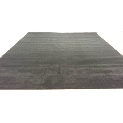 Hand-Carved Black Area Rug Rug Size: 53 x 72