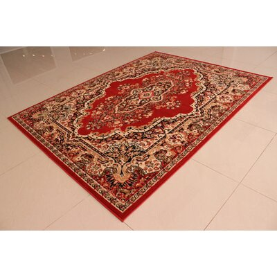 Orange Area Rug Rug Size: 5'3