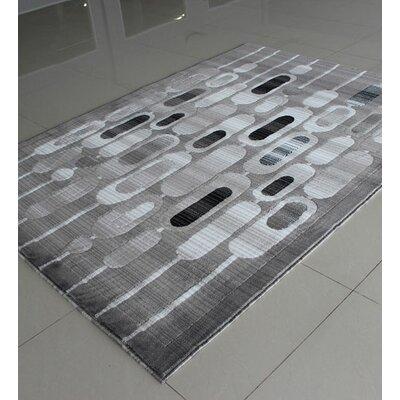 Gray Area Rug Rug Size: 711 x 910