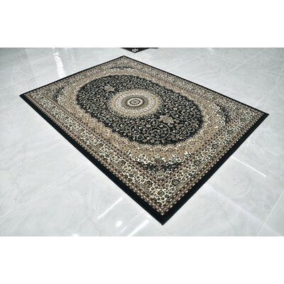 Black Area Rug Rug Size: Runner 2'7