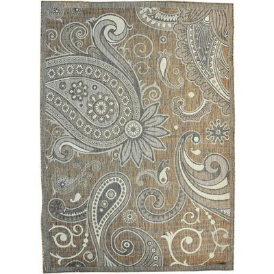 Buckingham Brown Area Rug Rug Size: 53 x 72