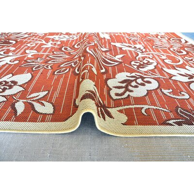 Terracotta Area Rug Rug Size: 2 x 3