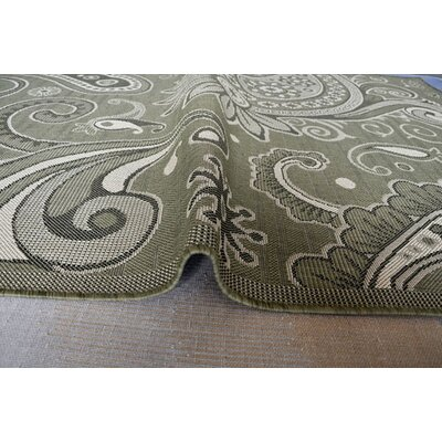 Green Area Rug Rug Size: 711 x 910