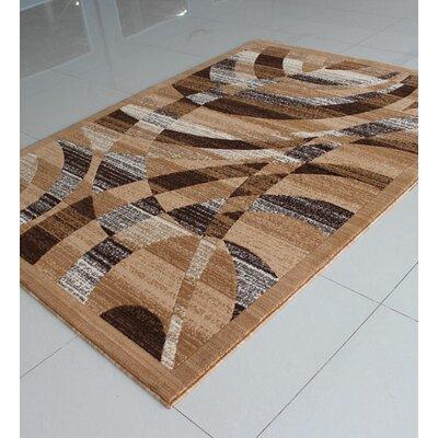 Berber Area Rug Rug Size: 53 x 72