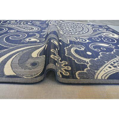 Navy Area Rug Rug Size: 5'3