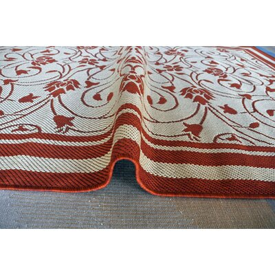 Terracotta Area Rug Rug Size: 53 x 72