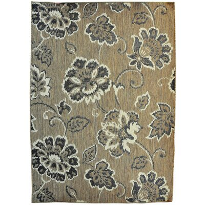 Brussels Brown Area Rug Rug Size: 711 x 910