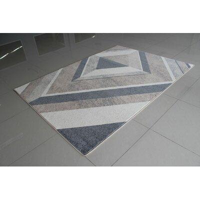 PRT1611 Berber Area Rug Rug Size: 53 x 72