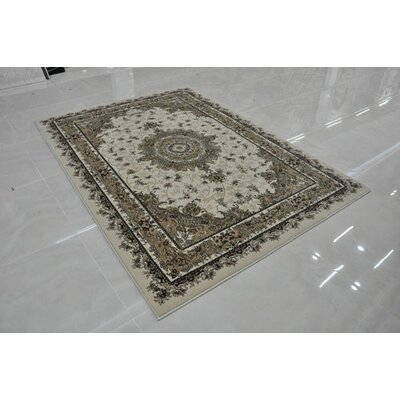Cream Area Rug Rug Size: Rectangle 53 x 72