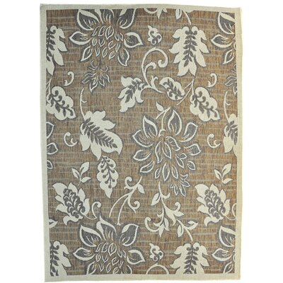 Brunette Brown Area Rug Rug Size: 53 x 72