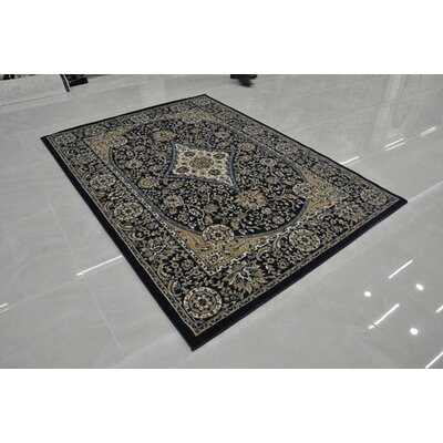 Navy Area Rug Rug Size: Rectangle 53 x 72