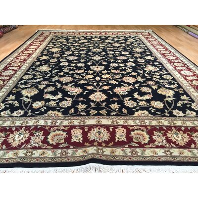 Drummaul Hand-Knotted Beige/Black Area Rug