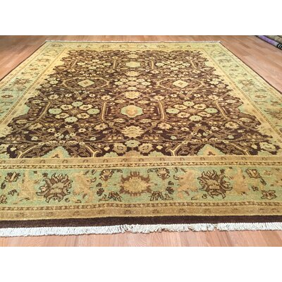 Ziegler Hand-Knotted Brown/Beige Area Rug