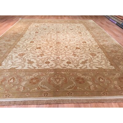 Hand-Knotted Beige/Brown Area Rug