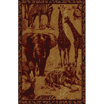Cordelia Brown Area Rug Rug Size: 53 x 72