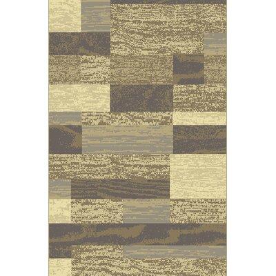 Cari Gray Area Rug Rug Size: 53 x 72