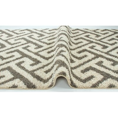 Akil Ivory Area Rug Rug Size: 53 x 72