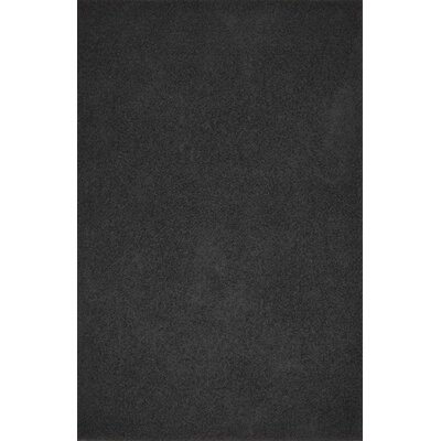 Alsey Black Area Rug Rug Size: Rectangle 4 x 6
