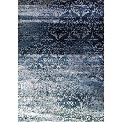 Abrahamsville Dark Blue Area Rug Rug Size: 711 x 910