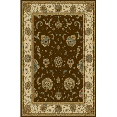 Florentin Dark Brown Area Rug Rug Size: 53 x 72