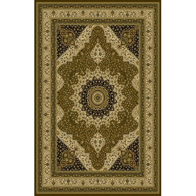 Penright Dark Brown/Green Area Rug Rug Size: 711 x 910